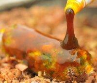 KIANA GOO Spicy Squid  Supreme